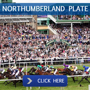 northumberland-plate-packages