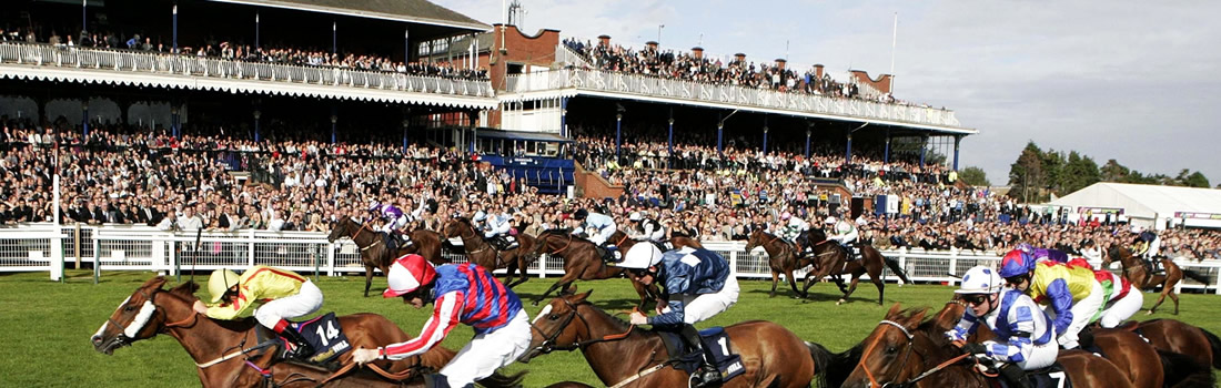 ayr races restaurants