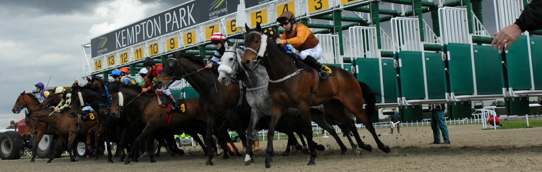 Kempton Races Christmas Meeting