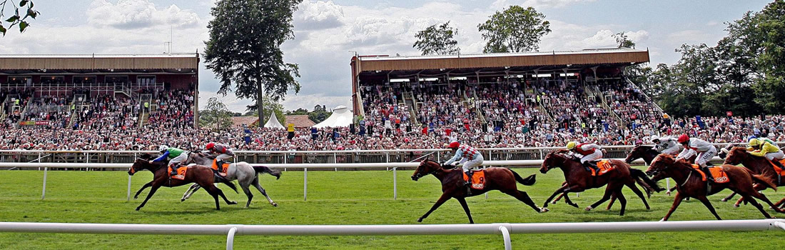 Dine & View Newmarket July Course
